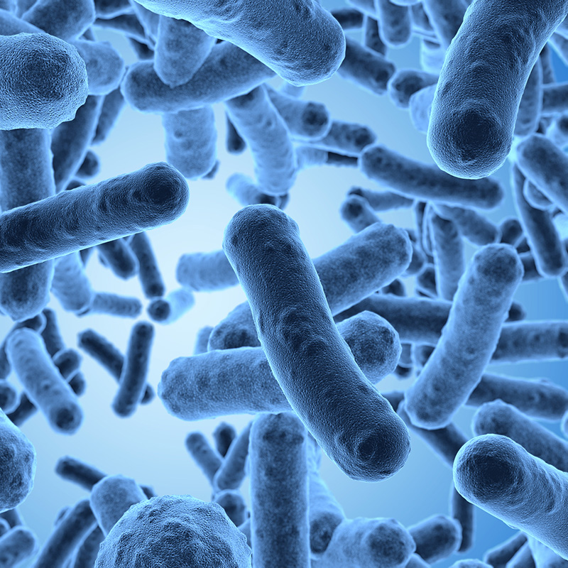Microbiological Testing Product Videos